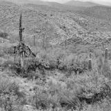 Redingote Pass, AZ 1991