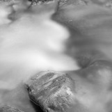 Otter Creek 4, VA 2007